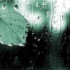 Я дождь люблю...