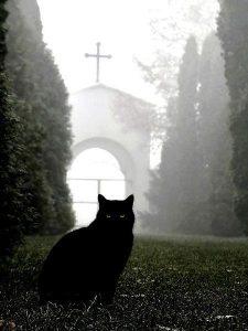 Размышление на кладбище №2 стихи
